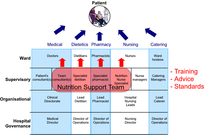 Nutrition Support Team Diagram
