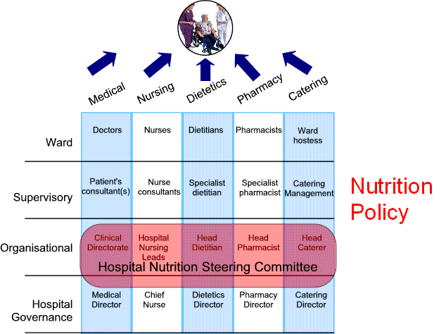 Nutrition Steering Committee Diagram
